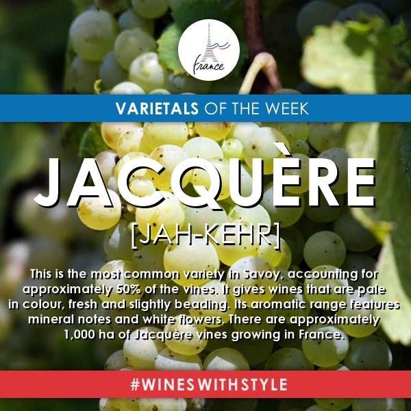 36 Best Vins Francais La Savoie Images On Pinterest Wine Guide