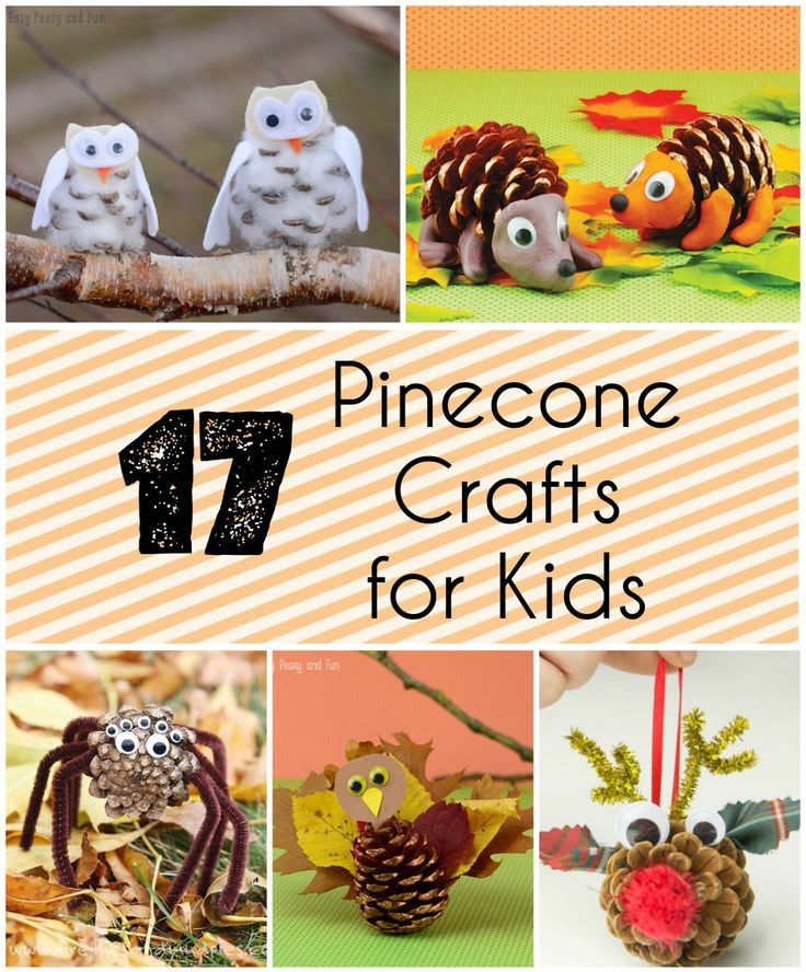17 Pinecone Crafts for Kids