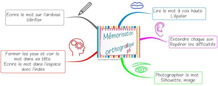 Carte mentale Orthographe