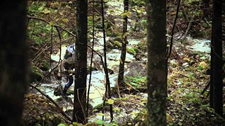 Olavi Uusivirta: Metsänpoika