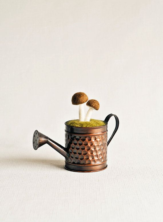 1000 Ideas About Mini Watering Can On Pinterest May