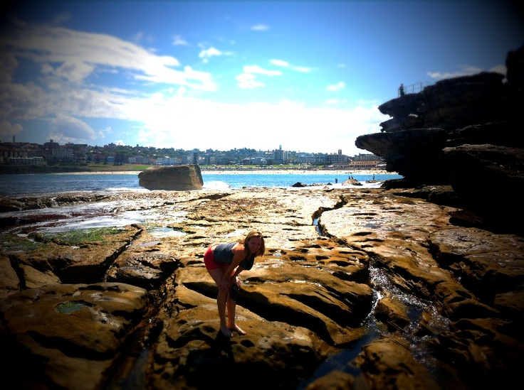 Inspecting the Rock Pools