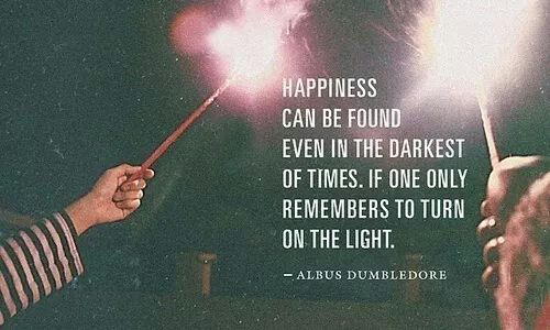 Albus Dombuldore. Harry Potter