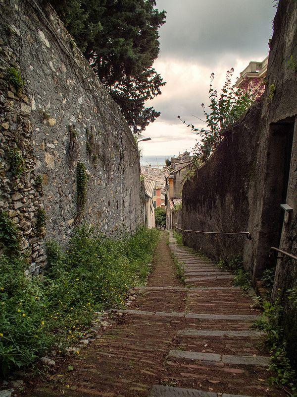 Creuza de ma da me site' (scalinata al mare della mia citta'.....more inside)   Flickr - Photo Sharing!