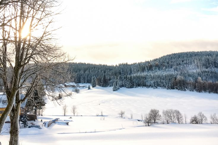 Mein Bericht über unseren Kurzurlaub im Hotel derWaldfrieden im Schwarzwald. Hier gibt es ein erstklassiges panoramaSpa und ein sehr gutes Restaurant.