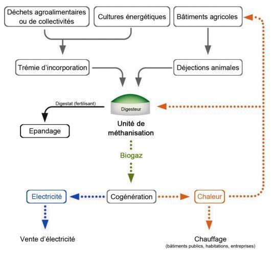 énergie biomasse | Méthanisation (production de biogaz et de digestat) : explications
