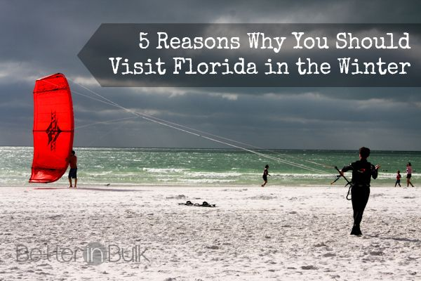 5 Reasons to Visit Florida in the Winter #Florida #Placeswetravel #AlamoDriveHappy