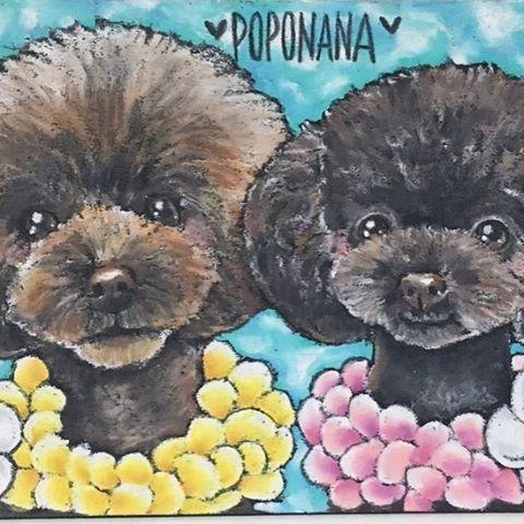 * 今日はもう一枚✨ クリスマスプレゼントオーダーをご紹介🎄💖 * * @poponana315  様のポポくんとナナちゃん◡̈💕 ポポくんはキリッとイケメン♡ナナちゃんは女の子らしい優しいお顔の可愛い2匹ちゃんでした☺️❤️ * 寒い季節ですが、 あったかい雰囲気のリゾート風に🌴♡ * * ありがとうございました✨ * #art #artist #artwork #illust #illustration #painting #drawing #dog #instagood #instaart #toypoodle #love #resort #cute #絵 #イラスト #チョークアート #かわいい #似顔絵 #ハンドメイド #わんこ #愛犬 #トイプードル #トイプー #リゾート #海 #カラフル #インテリア