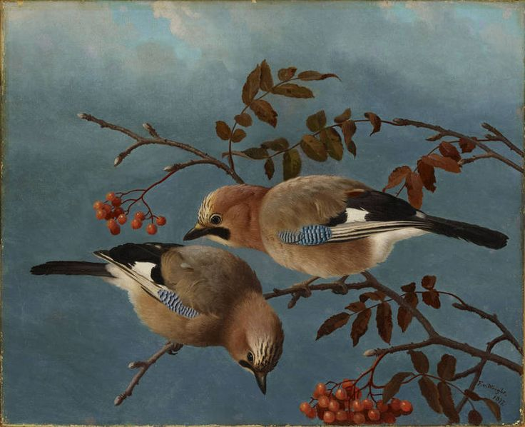 """Jays"" - ""Närhiä"", 1877 – oil on canvas –  Ferdinand von Wright (1822-1906) - Ateneumin taidemuseo"