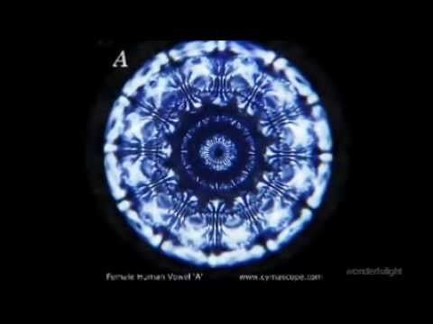 This CymaScope video makes visible the first twelve notes of a concert grand piano tuned to A4 = 440 Hertz. All notes show the attack, sustain and decay phas...