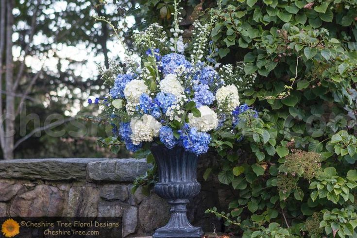 The cremony arrangements created in verdi gris urns using blue and white hydrangea, hybrid delphinium and white monte casino.