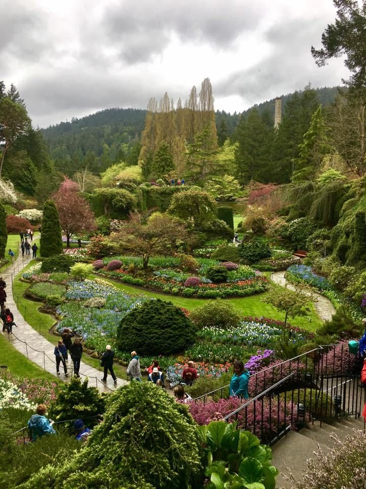 Butchart Gardens Victoria BC. Botanical Gardens in British Columbia Canada.