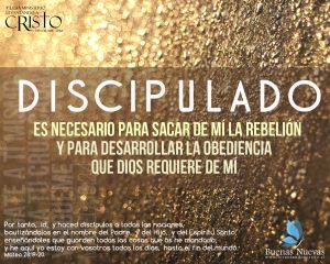 El Espíritu Santo te guía al discipulado