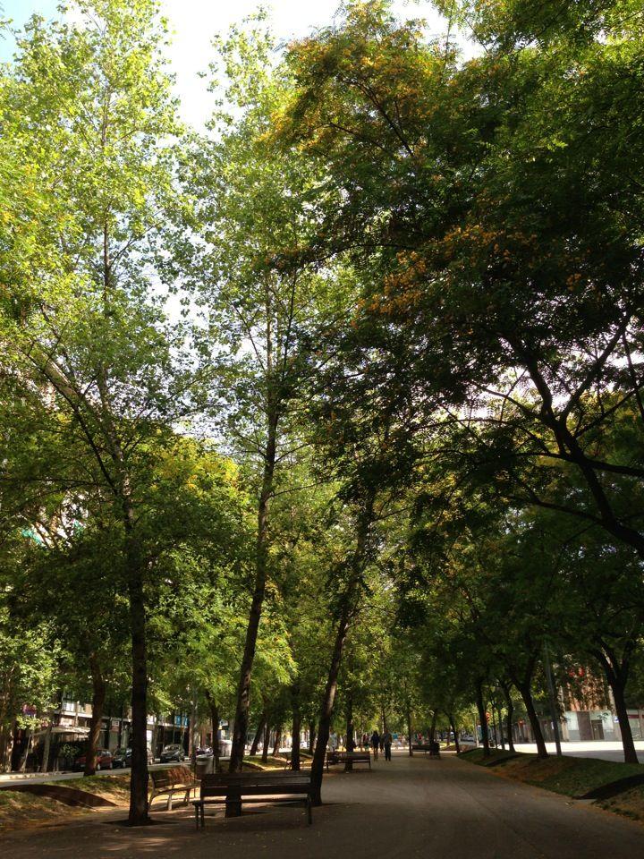 Avinguda Josep Tarradellas 37 El Bosque BCN