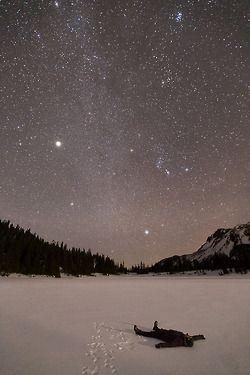 patagonia:  1. Jupiter lighting up the winter sky, Jefferson Park, Oregon, 1/4/2014 2. Jason Domogalla, @jomogalla 3.http://fieldguidetobirds.tumblr.com/post/72485961135
