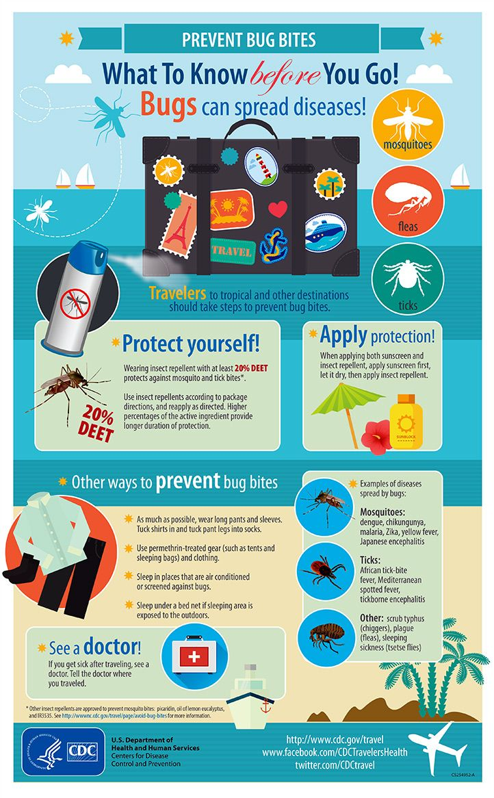 Preventing bites from mosquitoes and other bugs can prevent diseases like Zika while you travel.