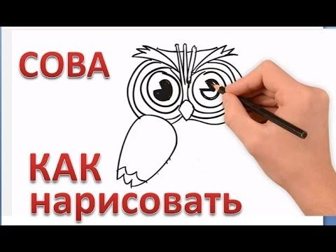 СОВА, Как нарисовать сову, #draw, owl, how to draw an owl