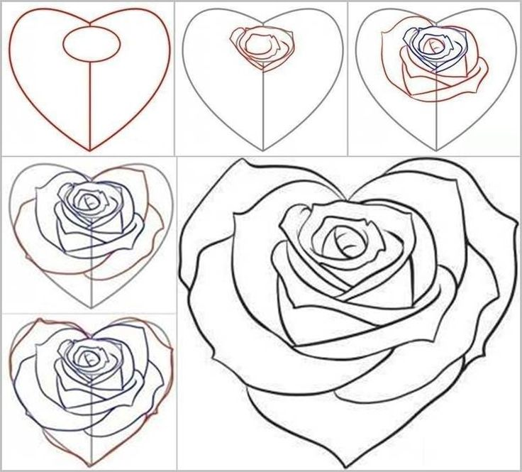 How to Draw a Rose from a Heart | iCreativeIdeas.com Follow Us on Facebook --> www.facebook.com/iCreativeIdeas