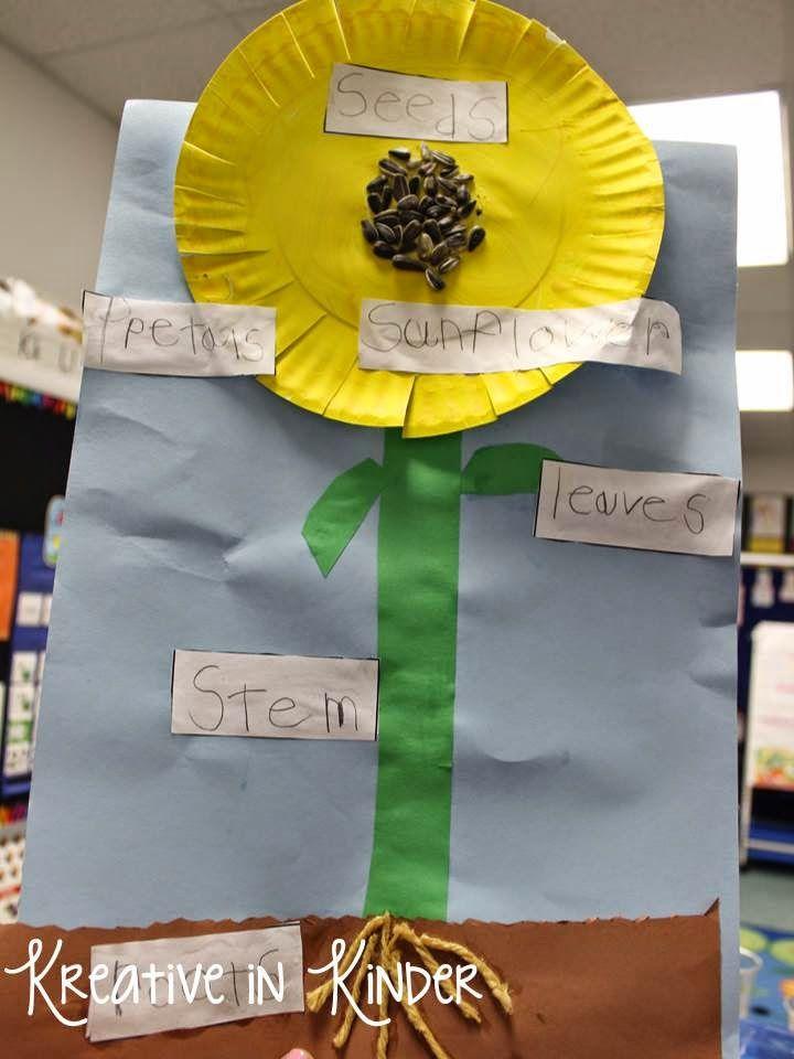 Spring Art Projects in Kindergarten!