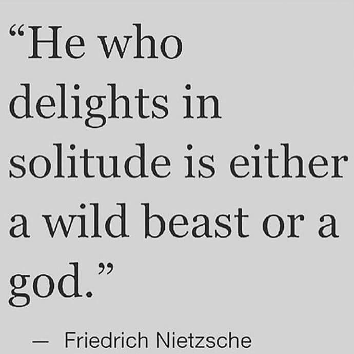 He who delights in solitude is either a wild beast or a god.
