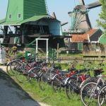 Zaanse Schans - Windmills Bike Tour