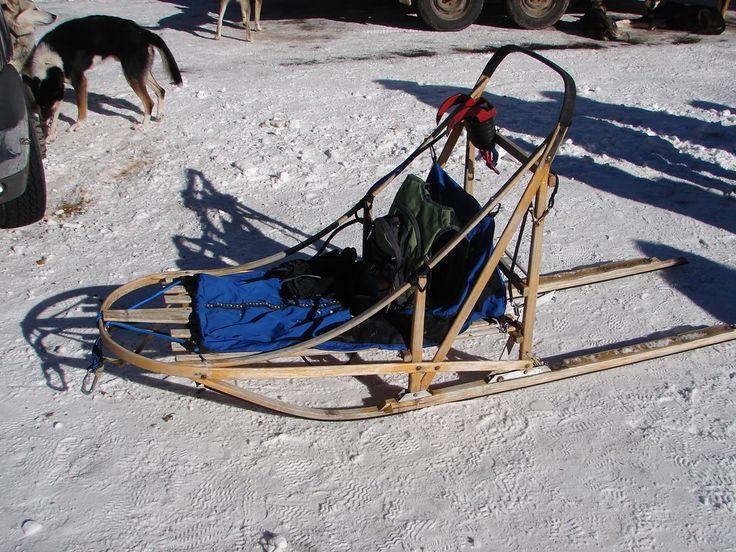 Dog Training In Homer Alaska