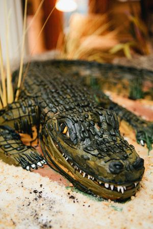 Please GOD let me marry a Gator so this can be the Groom's cake.: