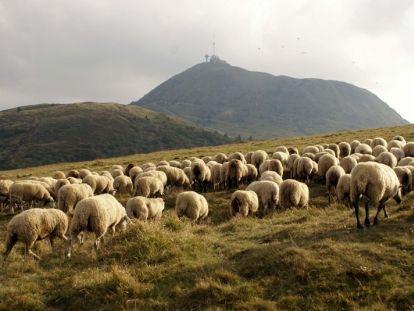 Rando - Tour du Puy de dome - Clermont-Ferrand. http://www.fasthotel.com/auvergne/hotel-clermont-ferrand