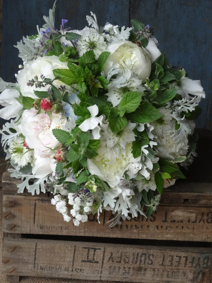 307 best seasonal summer flowers images on pinterest. Black Bedroom Furniture Sets. Home Design Ideas
