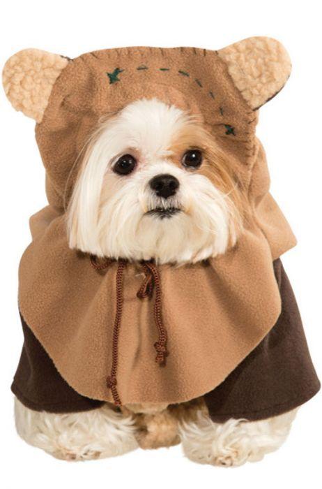 Disfraz de Ewok para perro varias tallas - Ropa para perros - Accesorios para perros - PERROS | Kiwoko
