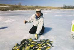 Everyone can stand to catch a few more panfish through the ice. However, ice anglers typically settle into a routine when they head out onto the ice. They catch several fish and then the action slows down or stops entirely. Maybe they change dept...