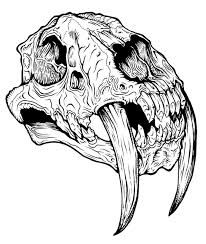 sabre tooth tiger skull - Google Search