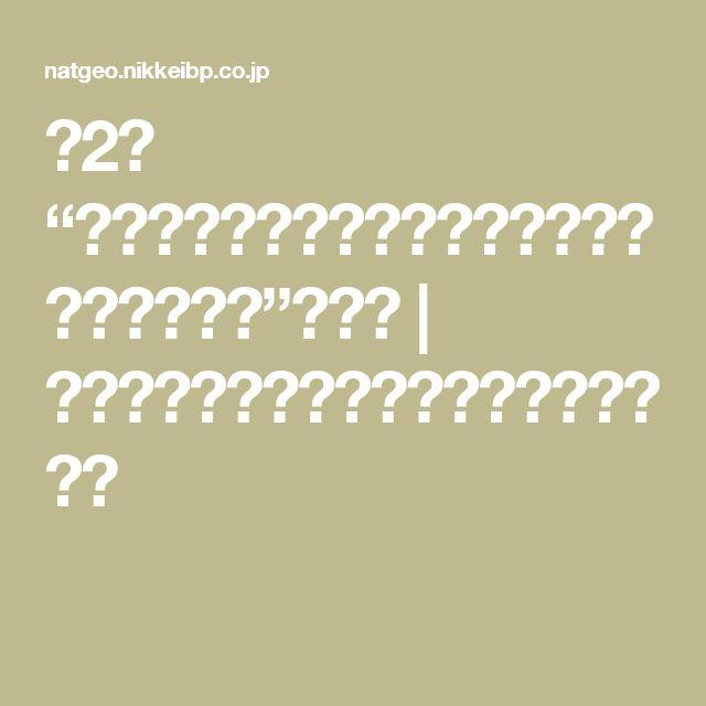 """第2回 """"覚せい剤やめますか?それとも人間やめますか?""""の弊害   ナショナルジオグラフィック日本版サイト"""