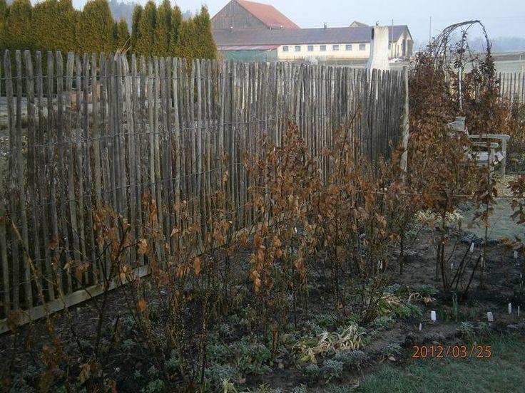 New Staketenzaun Kastanienzaun Seite Gartengestaltung Mein sch ner Garten online