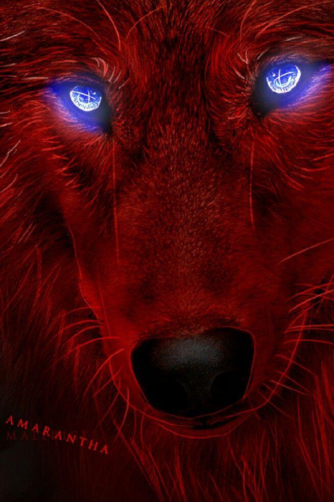 Pin By Faster Best On Rastafari Lion Fantasy Wolf Wolf Artwork Wolf Spirit Animal Anime wallpaper red wolf