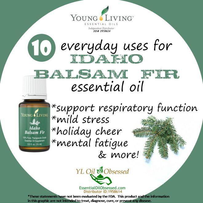 Idaho Balsam Fir Uses | EssentialOilObsessed.com