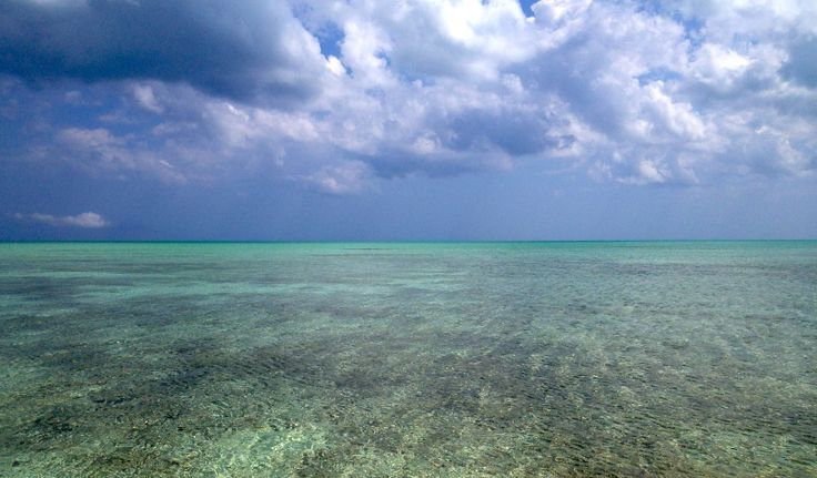 Flats, andros island Bahamas, the view from Diomedes' staging site