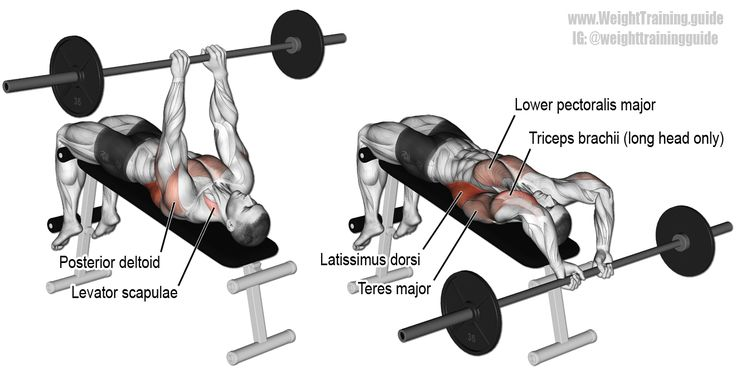 Decline bent-arm barbell pullover. An isolation exercise. Target muscles: Latissimus Dorsi and Sternal (Lower) Pectoralis Major. Synergistic muscles: Triceps Brachii (Long Head only), Teres Major, Posterior Deltoid, Rhomboids, Levator Scapulae, and Pectoralis Minor. Visit site to learn proper form.