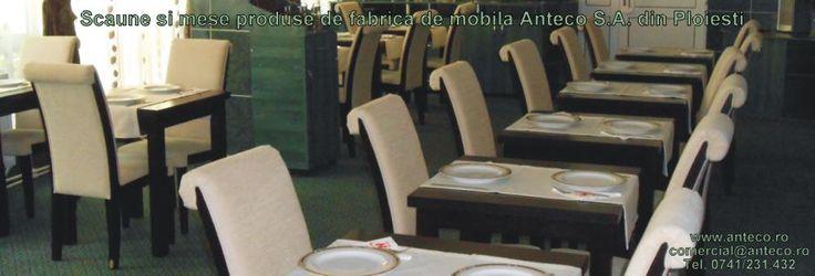 Scaune si mese din lemn masiv.Scaune din lemn tapitate produse de fabrica de mobila Anteco S.A. din Ploiesti