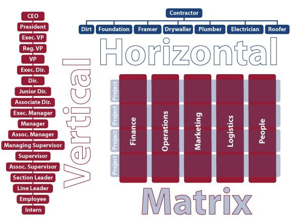 vertical organization