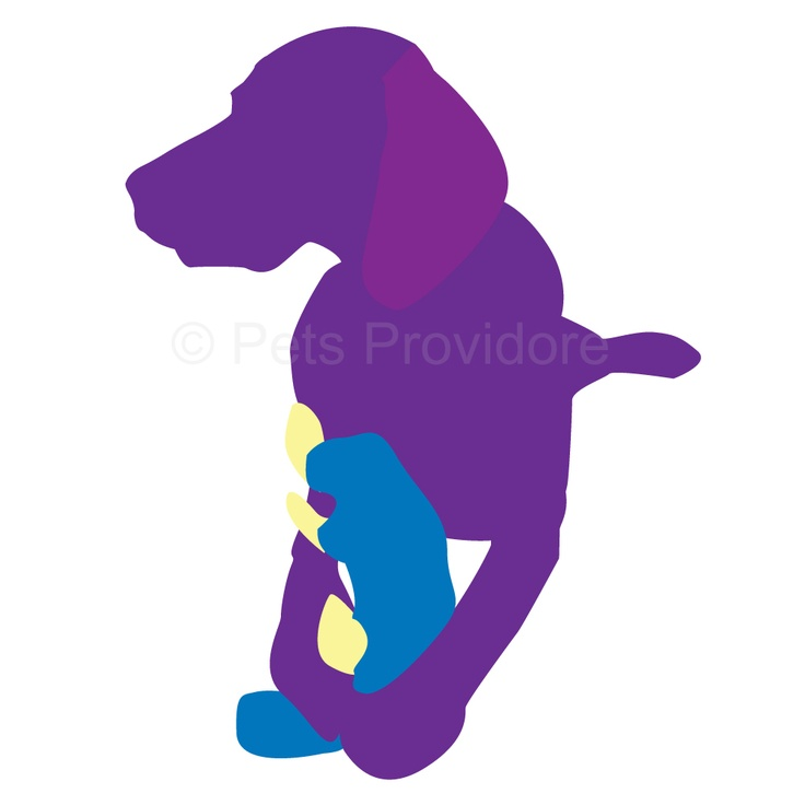 Egg Babies Plush Puppy Toys from Kyjen USA     Your dog is going to have heaps of fun working out how to get squeaking eggs out of these toys    When your dog has finished playing with the eggs you simply place them back inside the Egg Baby ready for their next play session