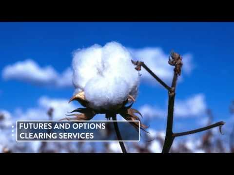 Sweet Futures Independent Futures and Options Brokerage Firm -  Products and Services Overview - http://LIFEWAYSVILLAGE.COM/career-planning/sweet-futures-independent-futures-and-options-brokerage-firm-products-and-services-overview/