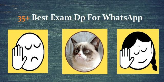 best exam dp