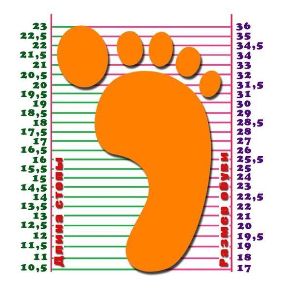 Обувь детская 15см это сколько