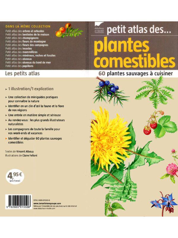 Les 25 meilleures id es de la cat gorie plantes - Cuisine plantes sauvages comestibles ...
