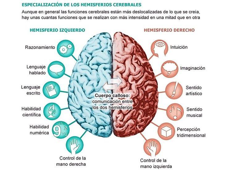 ejercicios-para-estimular-el-cerebro-gimnasia-cerebral
