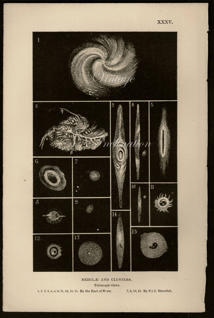 76 Best Images About Astronomy Decor On Pinterest Halley