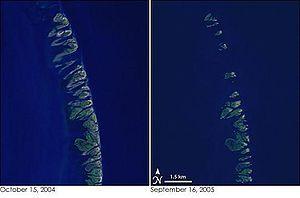 Huracán Katrina - Wikipedia, la enciclopedia libre Las islas Chandeleur antes (izquierda) y después (derecha) del paso del Katrina.