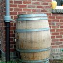 Collect rain water with a wine barrel