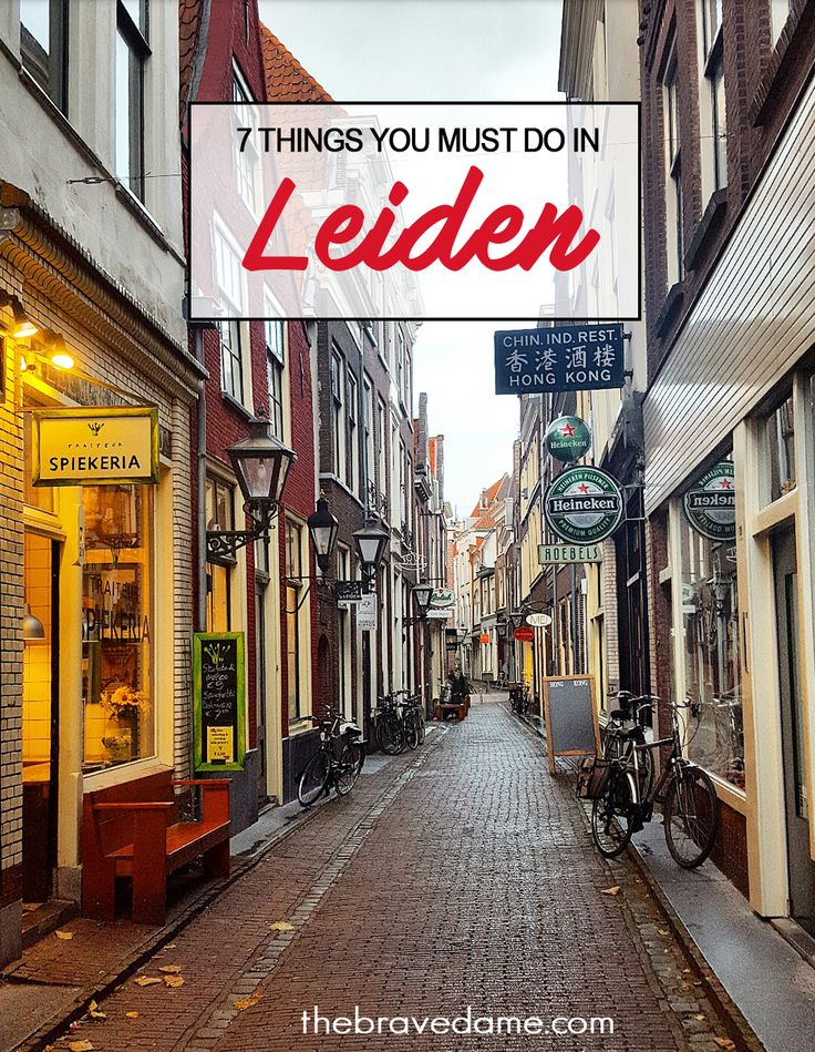 7 amazing things to do in #Leiden, The Netherlands